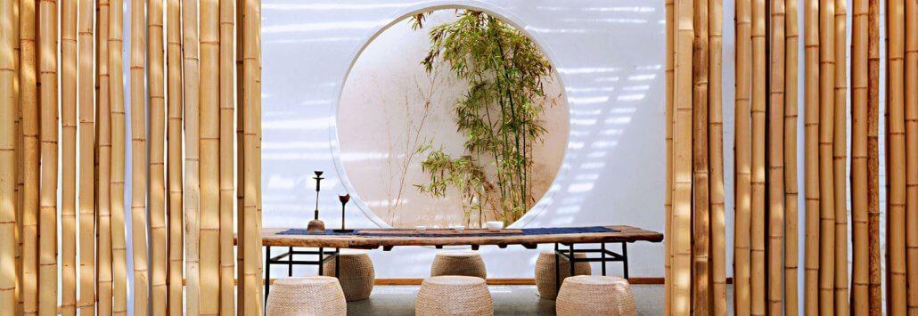 estudio con bambú