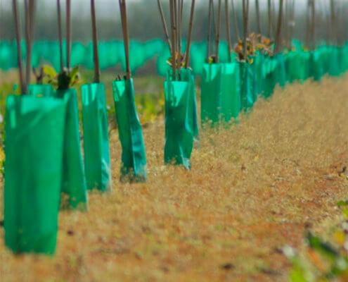 Herbicide Guard