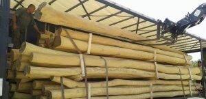 postes de madera de acacia