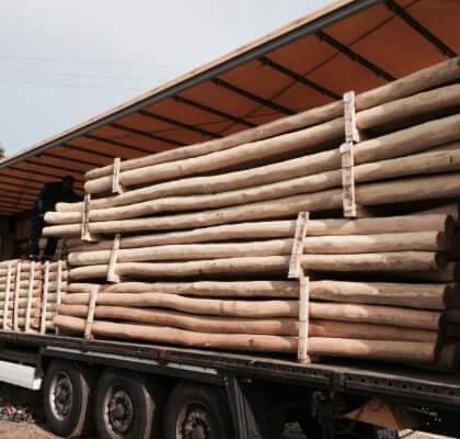 tutores de madera