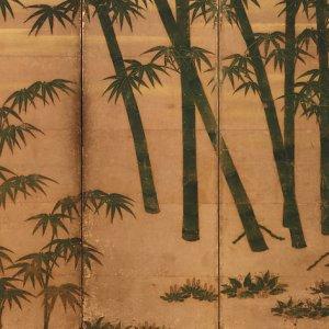 bambú pintado