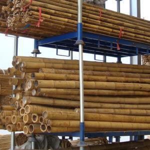 Caña de bambú chino
