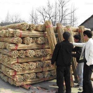 comprar palet de bambú