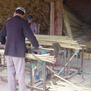 Cortado de las cañas de bambú.