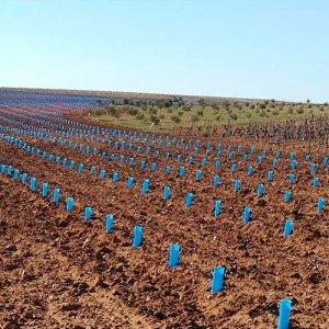 protector cultivos doble capa abiertos