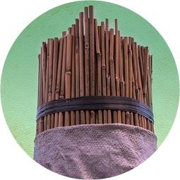 Tutor bambú chino
