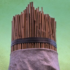 Tutor de caña de bambú chino