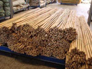 Tutores de caña de bambú tailandés