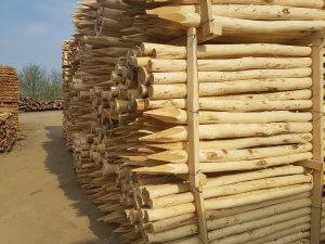 postes acacia